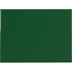 BASE VERDE BRILLO 15x20cm STD